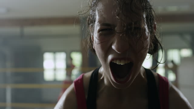 female celebratory scream in boxing ring - sweat stock videos & royalty-free footage