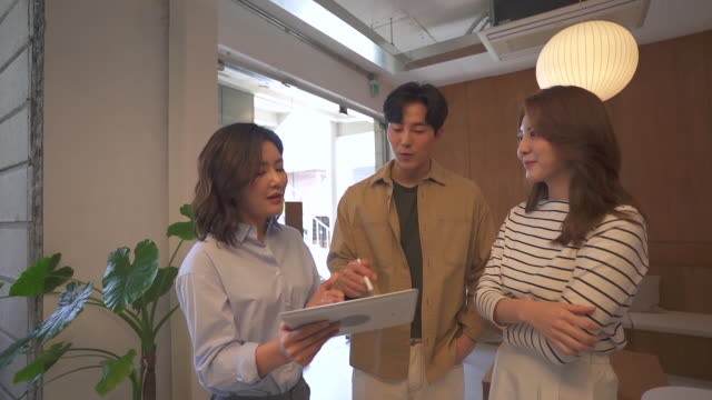 female ceo and young people having a meeting in a lounge, startup business - 人間の鼻点の映像素材/bロール