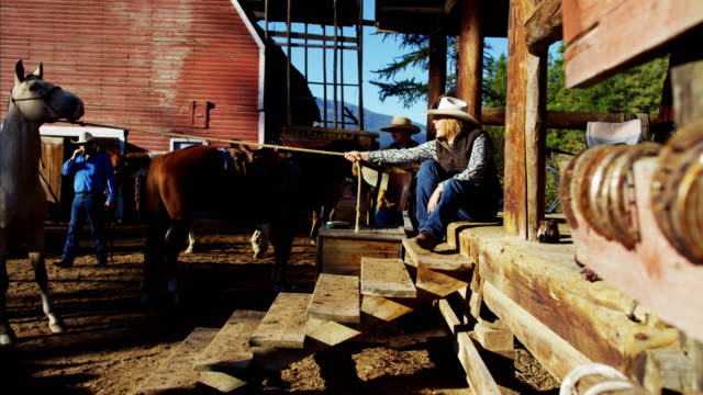 female cowgirl working with horse dude ranch canada - cowgirl stock videos & royalty-free footage