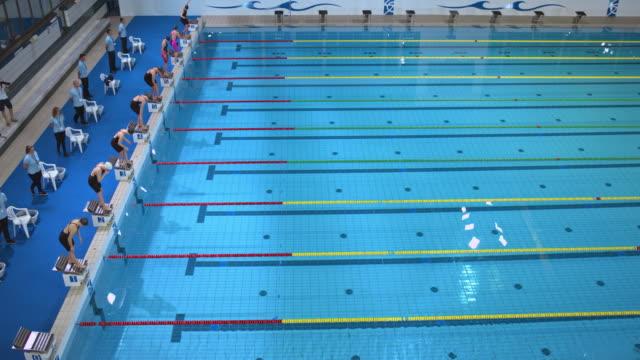 vídeos de stock, filmes e b-roll de female dive start in freestyle swimming competition - natação