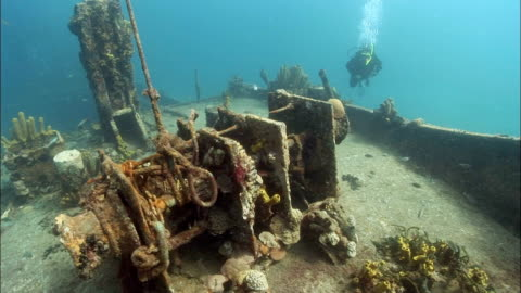 ms, female diver swimming around shipwreck covered with corals, saint lucia - wrack stock-videos und b-roll-filmmaterial