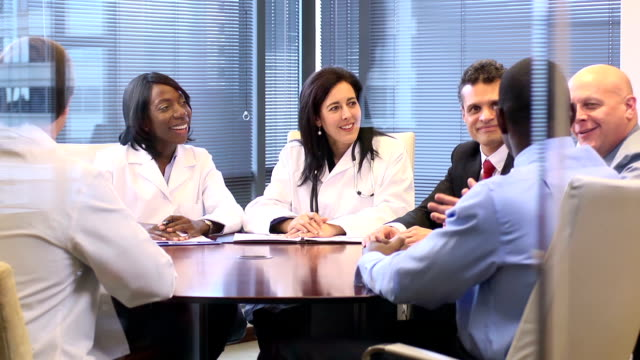 Female Doctor Leads a Meeting with Professionals - WS