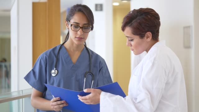 female doctors consulting on a case - general practitioner stock videos & royalty-free footage