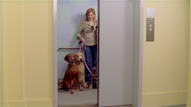 MS, Female dog walker leaving elevator