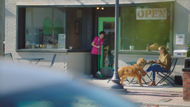 female employee of an ice cream parlor sweeps the sidewalk and gives a dog a biscuit - 犬の散歩点の映像素材/bロール