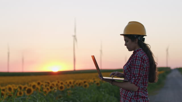 a female engineer works on a laptop and adjusts the wind turbines as he walks through a sunflowers field, at sunset. - leadership stock videos & royalty-free footage
