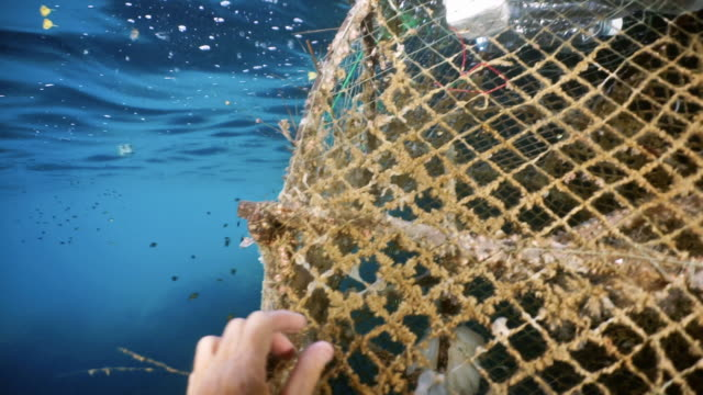 female environmental activist scuba diver removing ghost net pollution from the ocean - scuba diver point of view stock videos & royalty-free footage