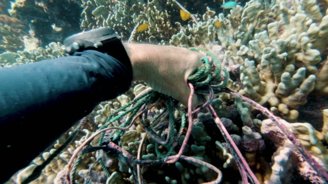 female environmental activist scuba diver underwater environmental cleanup point of view - fishing net stock videos & royalty-free footage