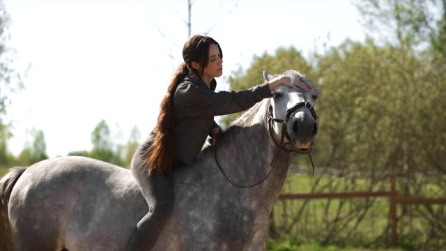 female equestrian with long hair mounts grey horse during training - 雄馬点の映像素材/bロール