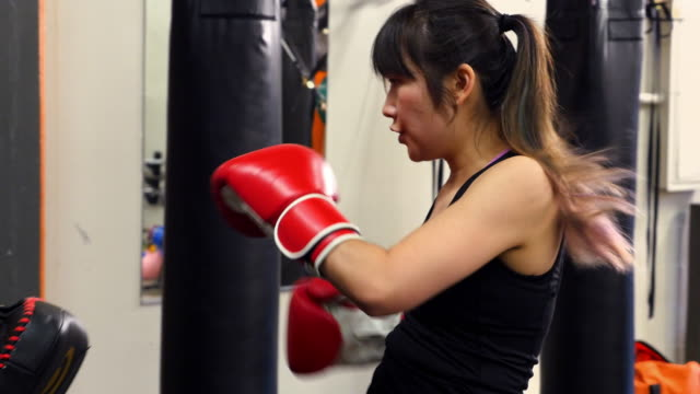 ms pan female fighters using punching mitts to train in gym - 女子ボクシング点の映像素材/bロール