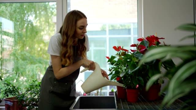 女性の花屋の散水花 - フローリスト点の映像素材/bロール