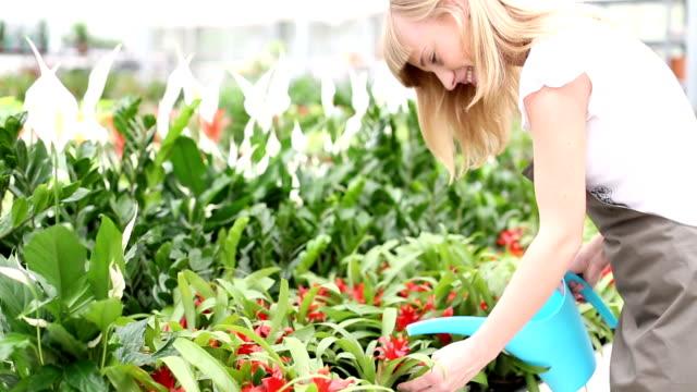 HD: Female Florist Watering Flowers.