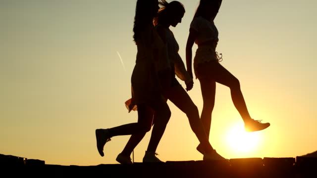 vidéos et rushes de ami femelle ayant l'amusement sur le lac - allée couverte de planches