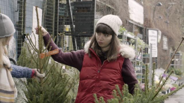 vídeos de stock e filmes b-roll de female friends compare two christmas trees at street market. - arvore de natal