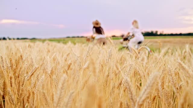 slow motion amiche in bicicletta oltre il campo di grano in campagna - vestito bianco video stock e b–roll