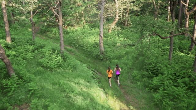 Veduta aerea femmina gli amici correre nella foresta
