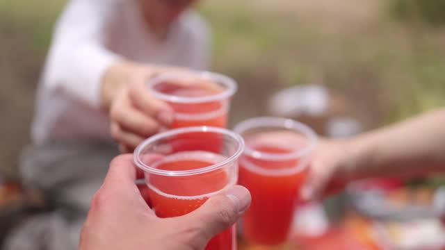 ピクニックでジュースで乾杯する女性の友人 - 神奈川県点の映像素材/bロール