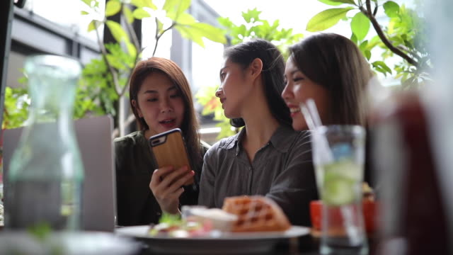 female friends using smart phone in a cafe - youth culture stock videos & royalty-free footage