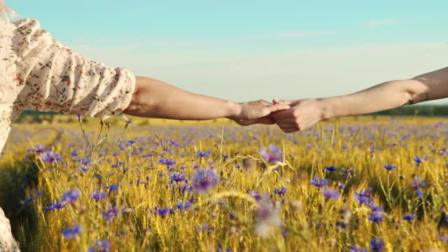 slow motion amiche che camminano attraverso il campo di grano e si tengono per mano - vestito da donna video stock e b–roll