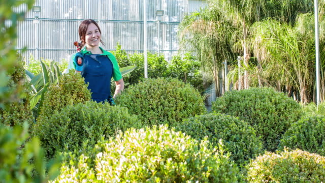 Female gardener shaping the plants at garden center