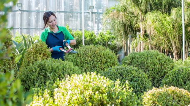 Female gardener shaping the plants at garden center