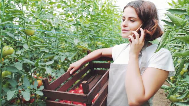 vídeos y material grabado en eventos de stock de mujer jardinero hablando en el teléfono móvil. - tomate