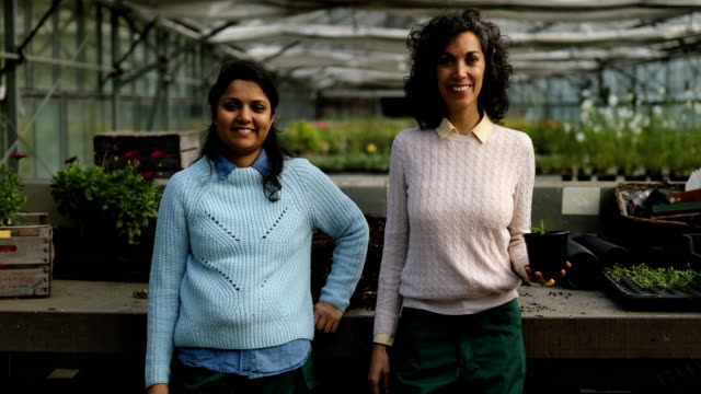 female gardeners standing together in greenhouse - leisure activity stock videos & royalty-free footage