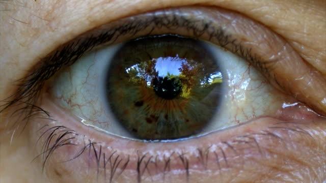female green eye hd - cornea stock videos and b-roll footage