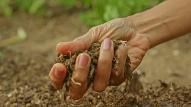 vídeos de stock, filmes e b-roll de slo mo feminino mão agarrando solo jardim para verificar a qualidade - levantar
