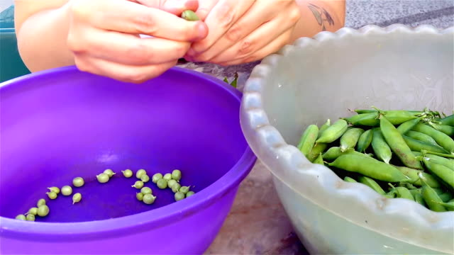 Female hands shelling green peas