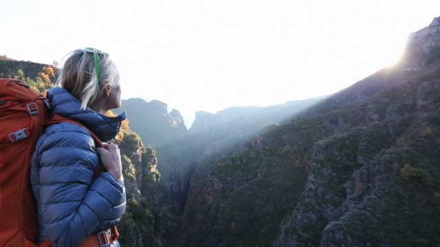 stockvideo's en b-roll-footage met female hiker admires view from ridge crest, above canyon - bewondering