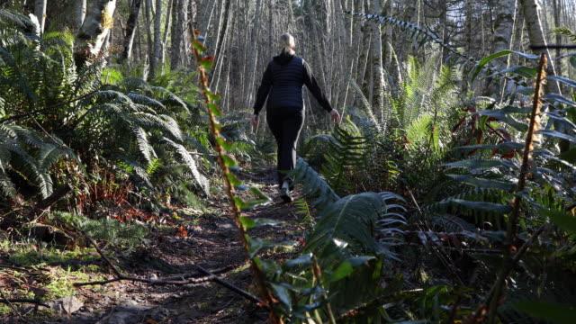 vídeos y material grabado en eventos de stock de hiker femenino asciende pista forestal al amanecer - fundido en negro