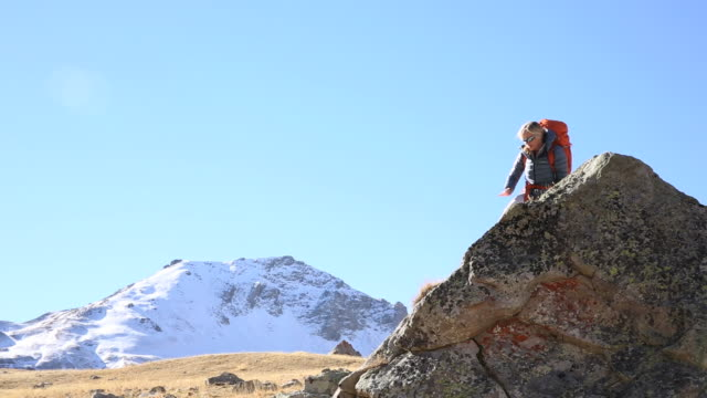 Female hiker climbs up, then relaxes on rock ridge, alpine meadow