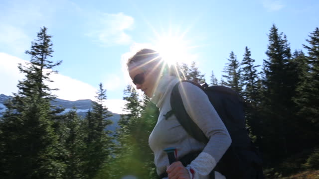 female hiker descends through mountain meadow, forest - kletterausrüstung stock-videos und b-roll-filmmaterial