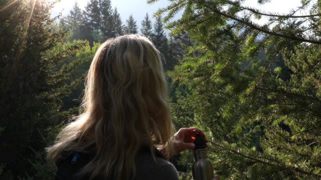 Female hiker drinks from water bottle in forest, at sunrise