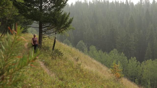 kvinnliga hiker följer stigen längs åsen crest, genom gräs - endast en medelålders kvinna bildbanksvideor och videomaterial från bakom kulisserna