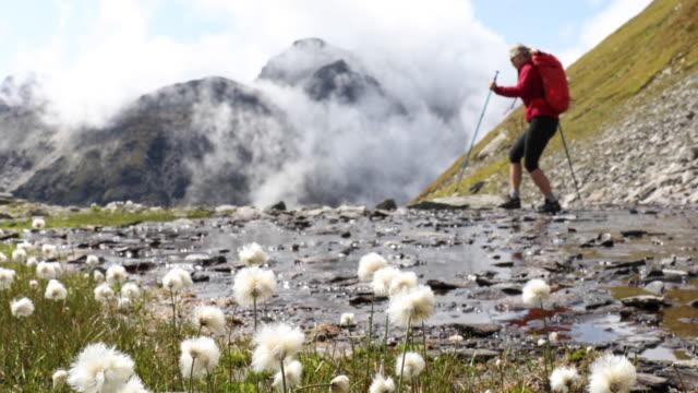 Female hiker hops between stepping stones in creek, mountains