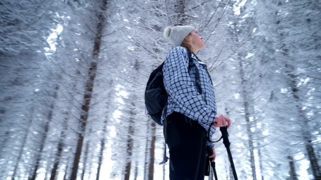 female hiker in snowy forest - majestic stock videos & royalty-free footage