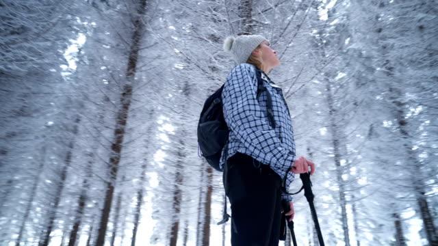 Vrouwelijke wandelaar in het besneeuwde forest