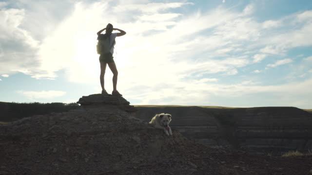 weibliche wanderer auf berggipfel mit hund - shorts stock-videos und b-roll-filmmaterial
