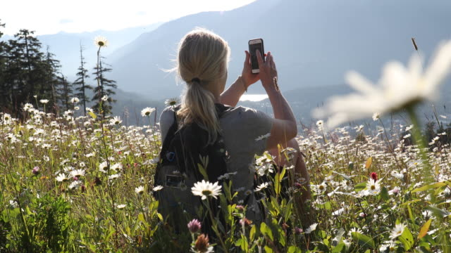 female hiker relaxes on mountain slope, in flowers - rucksack stock videos & royalty-free footage