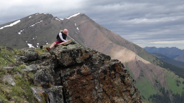 female hiker relaxes on mountain summit, takes pic of wildflowers - ジャスパー国立公園点の映像素材/bロール