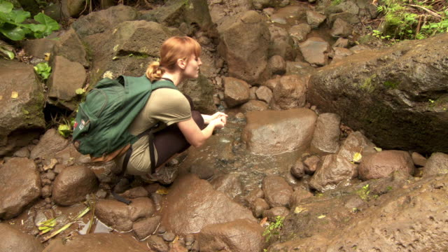 ms ha ws female hiker walking down rocky and muddy stream on kalalau trail, kauai, hawaii, usa - lush stock videos & royalty-free footage