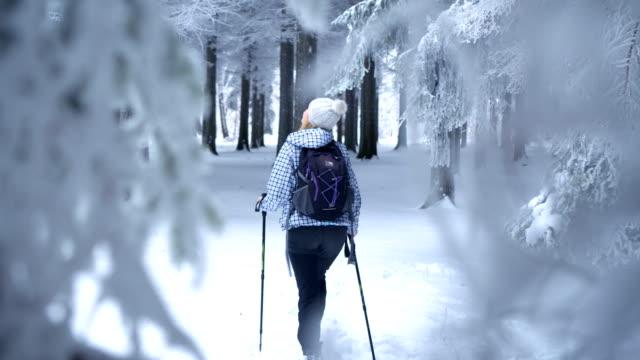 Vrouwelijke wandelaar wandelen in winter woud
