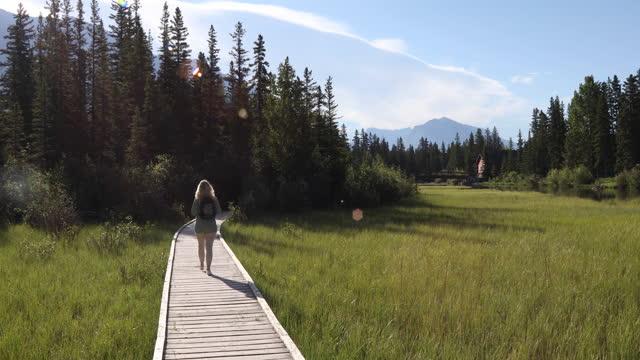 female hiker walks along boardwalk through marsh area - rucksack stock videos & royalty-free footage