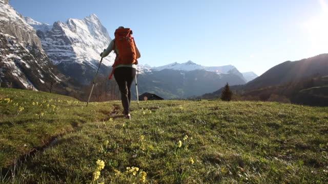 vídeos y material grabado en eventos de stock de female hiker walks through grassy mountain meadow, past stream - camisa de polo