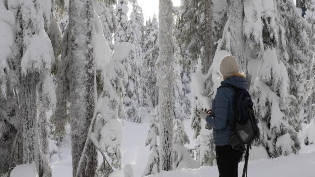 female hiker walks through snowy forest, uses smart phone - eyewear stock videos & royalty-free footage