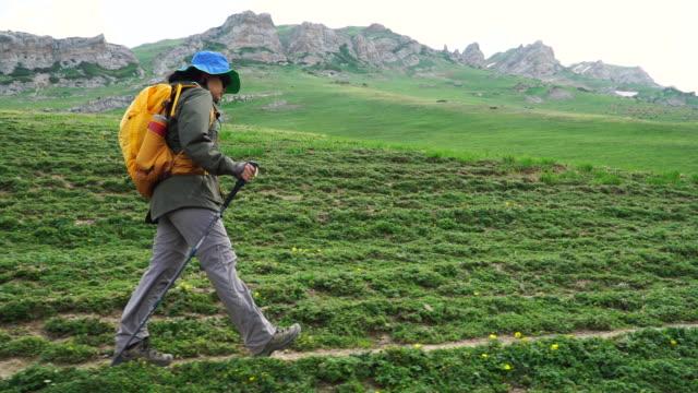 高い山の下の女性ハイキング - 全身点の映像素材/bロール