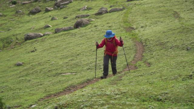 vídeos y material grabado en eventos de stock de senderismo femenino en el paisaje verde de las montañas - bastón de senderismo