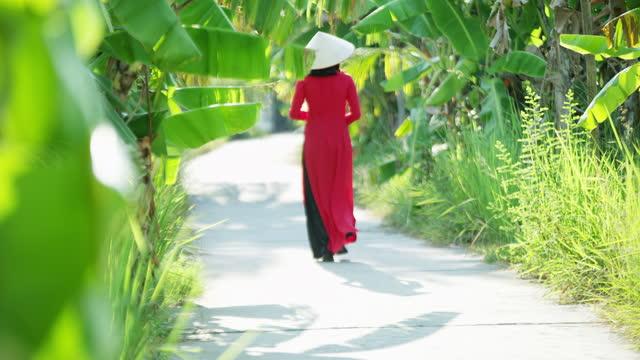 female in traditional dress walking through plantation vietnam - 赤のドレス点の映像素材/bロール